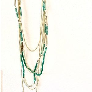 Long Accent Necklace